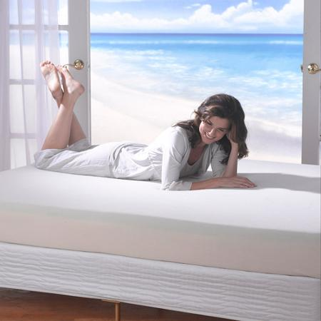 spa sensations 8-inch memory foam mattress featured image